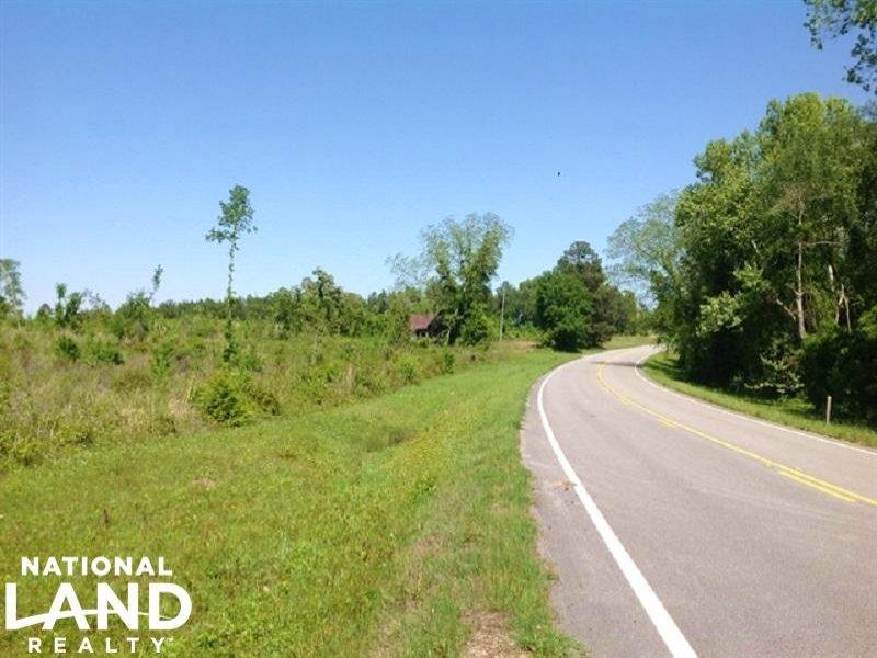 Warrenton Timber And Hunting Land : Warrenton : Warren County : Georgia