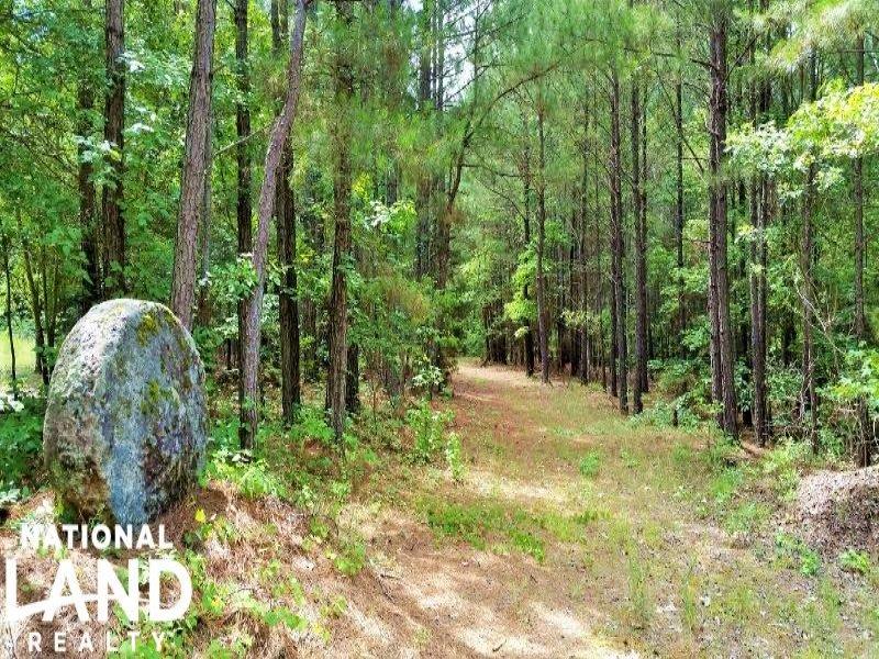 Mccormick Recreational Homesite : Mccormick : Edgefield County : South Carolina
