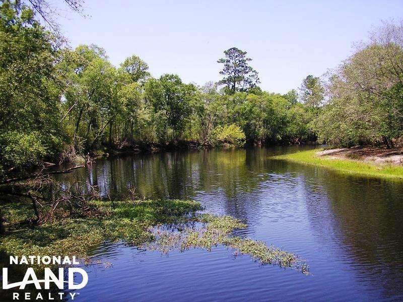 Great Satilla River Plantation : Nahunta : Brantley County : Georgia