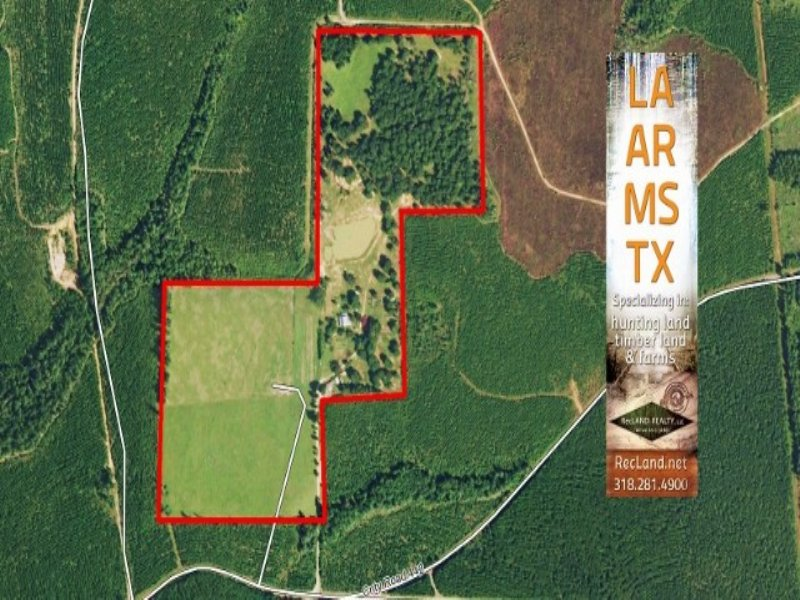 55.00 Acres Cattle Farm Land : Jasper : Jasper County : Texas