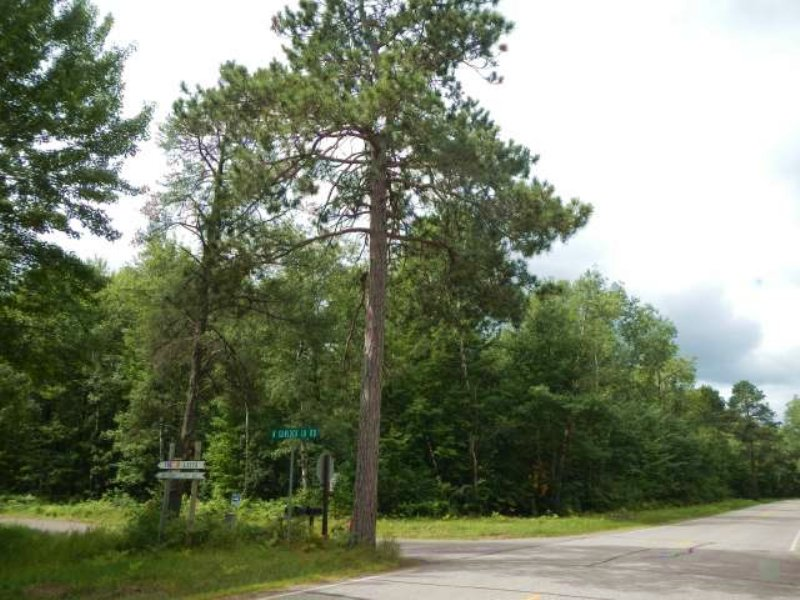 5.01 Wooded Level Acres : Lac Du Flambeau : Vilas County : Wisconsin