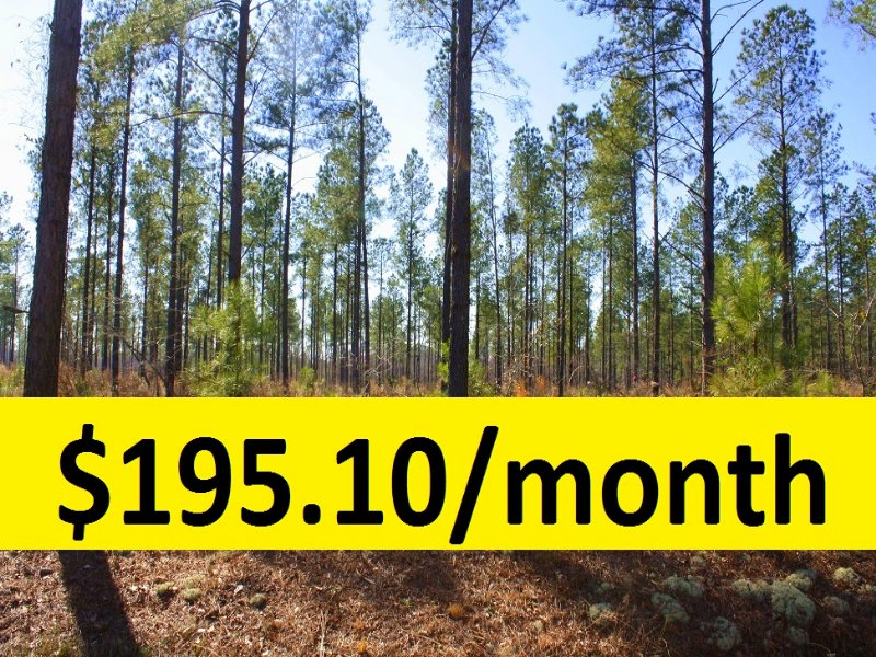 9.32 Ac Wooded Lots Near Cadwell : Cadwell : Laurens County : Georgia