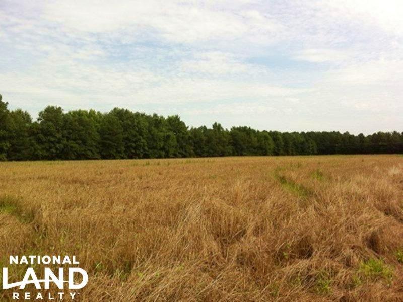 Eutawville Farming And Recreational : Eutawville : Orangeburg County : South Carolina