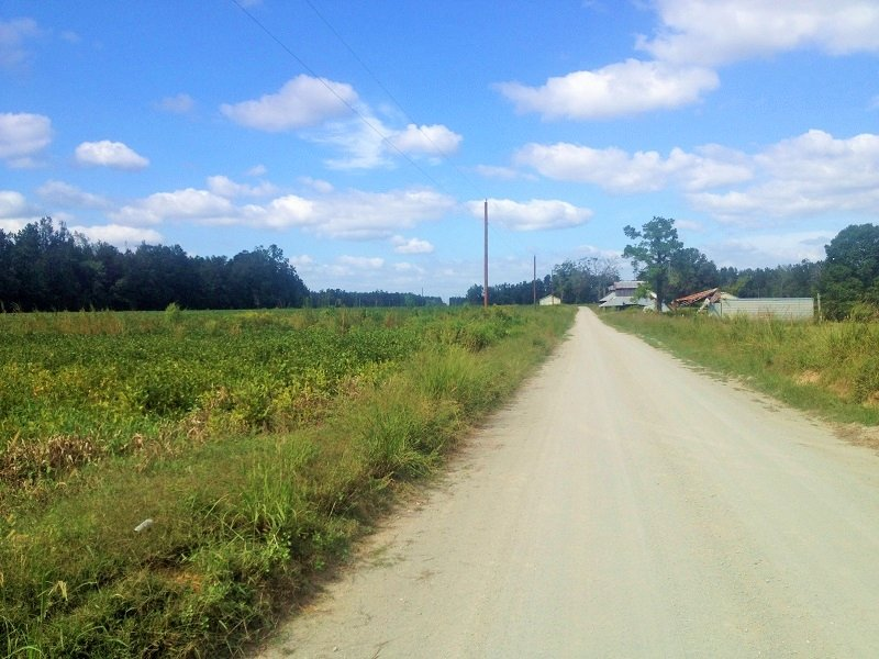 29.6 Acre Country Homesite Or Mini- : Finklea : Horry County : South Carolina