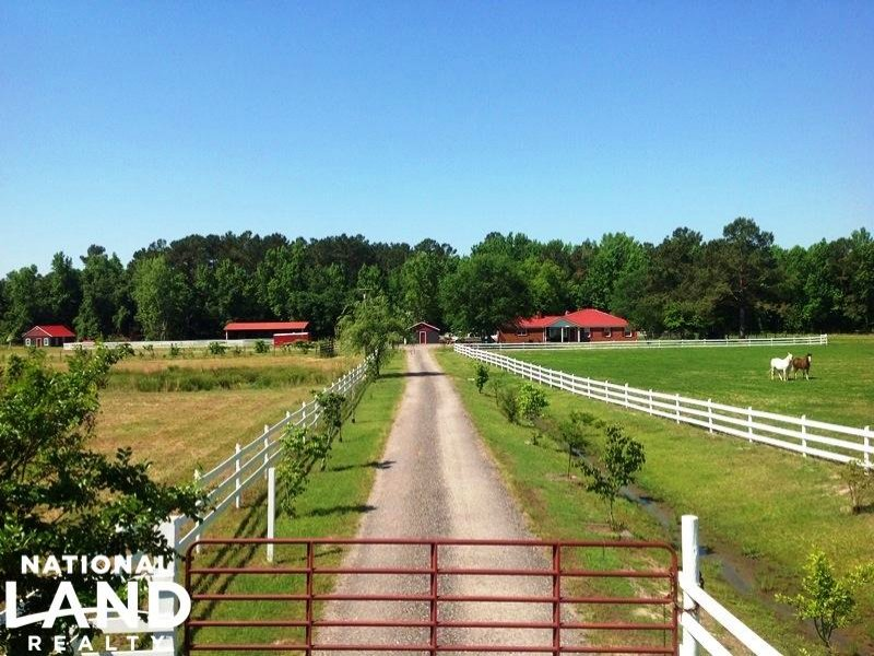 Sumter County Equestrian Estate : Lynchburg : Sumter County : South Carolina