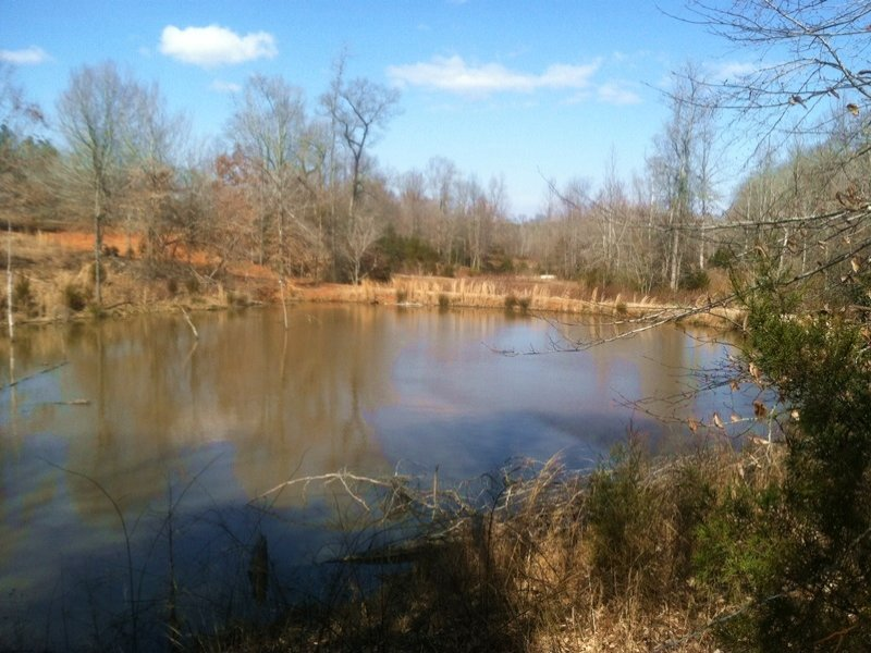 Beautiful Farming Estate : Enoree : Laurens County : South Carolina