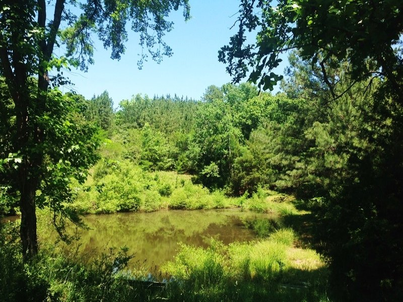 Carlisle Private Recreational Estat : Carlisle : Chester County : South Carolina