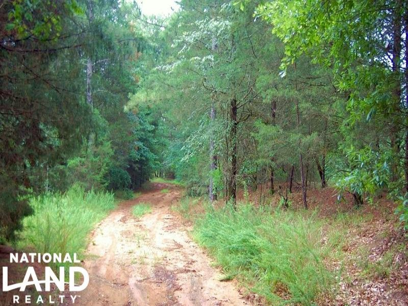 Private Hunting Tract With Creek : Chester : Chester County : South Carolina