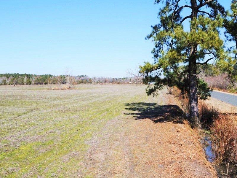 Sardis Agricultural & Recreational : Sardis : Florence County : South Carolina