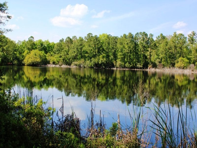 3 Acre Intracoastal Deep Water Acre : Awendaw : Charleston County : South Carolina