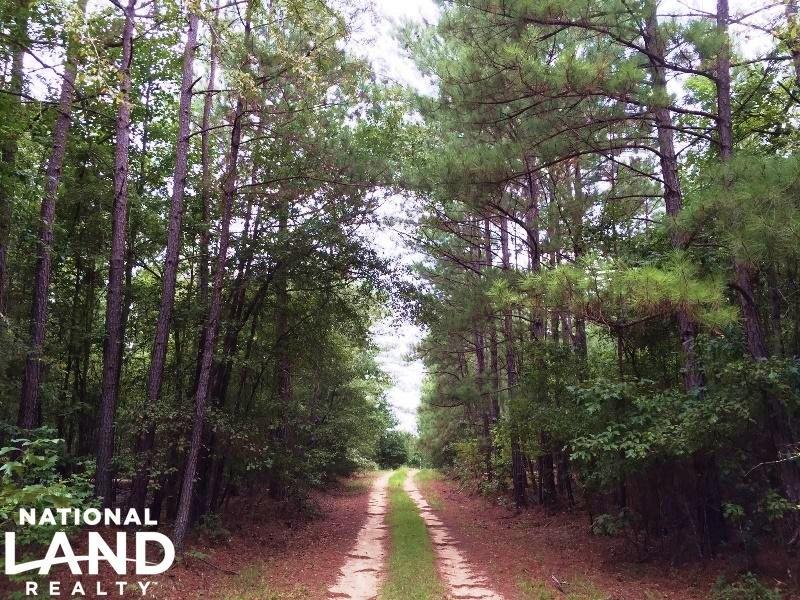 Lincolnton Recreational Homesite : Lincolnton : Lincoln County : Georgia