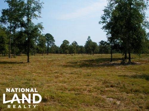 25.04 Acre Hound Hollow Equestrian : Camden : Kershaw County : South Carolina