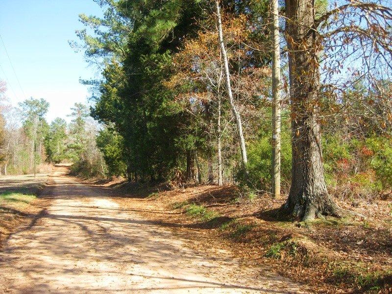 Quiet Leesville Homesite : Leesville : Lexington County : South Carolina