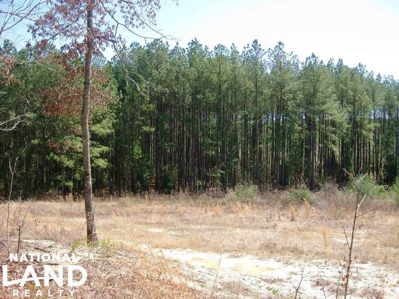 Gilbert Executive Homesite : Gilbert : Lexington County : South Carolina