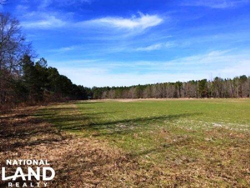 Recreational Hunting Land : Midway : Bullock County : Alabama