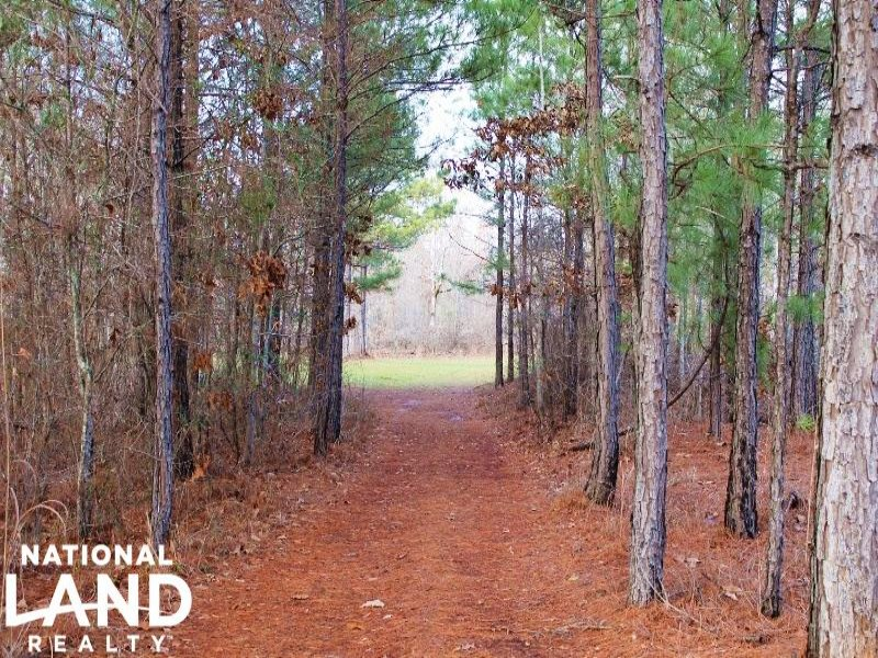 285 Acre Recreational Timber Invest : Lanett : Chambers County : Alabama