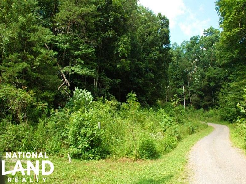 Residential Lot In Quiet Community : Cosby : Cocke County : Tennessee