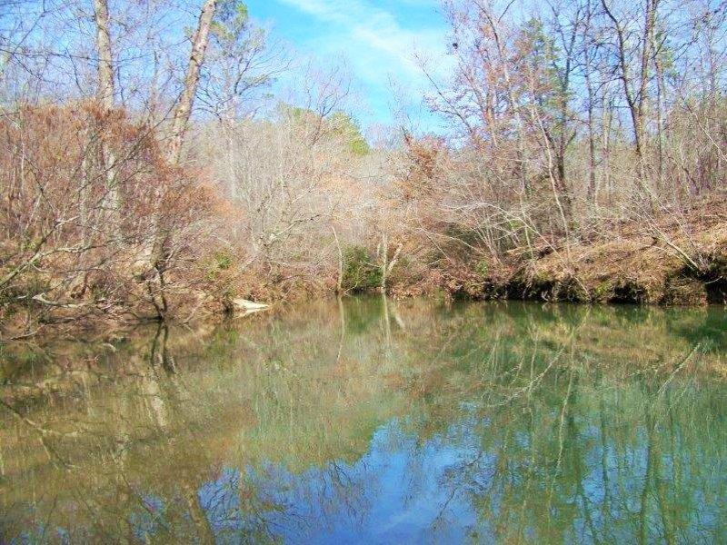 Recreational Hunting Timber Tract : Sylacauga : Coosa County : Alabama