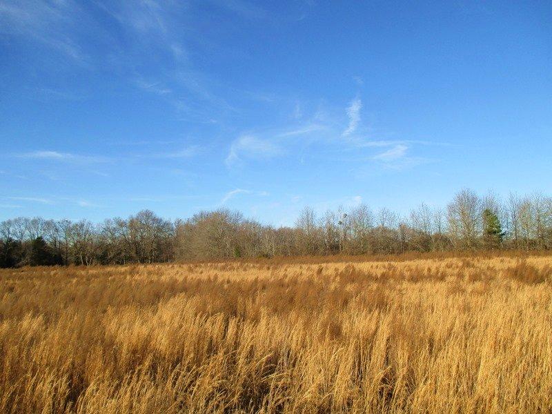 Laurens Farmland & Recreational Tra : Laurens : Laurens County : South Carolina