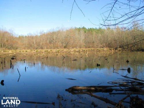 Rabon Creek Hunting & Timber Land : Laurens : South Carolina