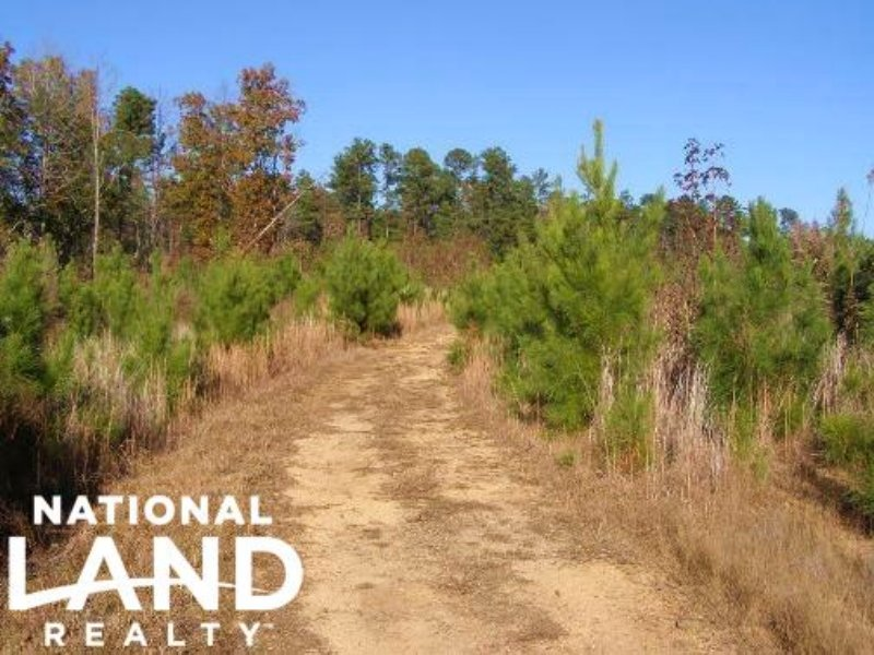 Whitmire Hunting & Timberland Tract : Whitmire : Union County : South Carolina