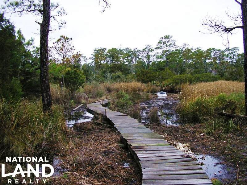 Pamlico Sound Hunting & Timber Cons : Stacy : Carteret County : North Carolina