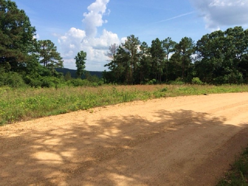 151 Acre Hunting & Timber Tract : Fayette : Fayette County : Alabama