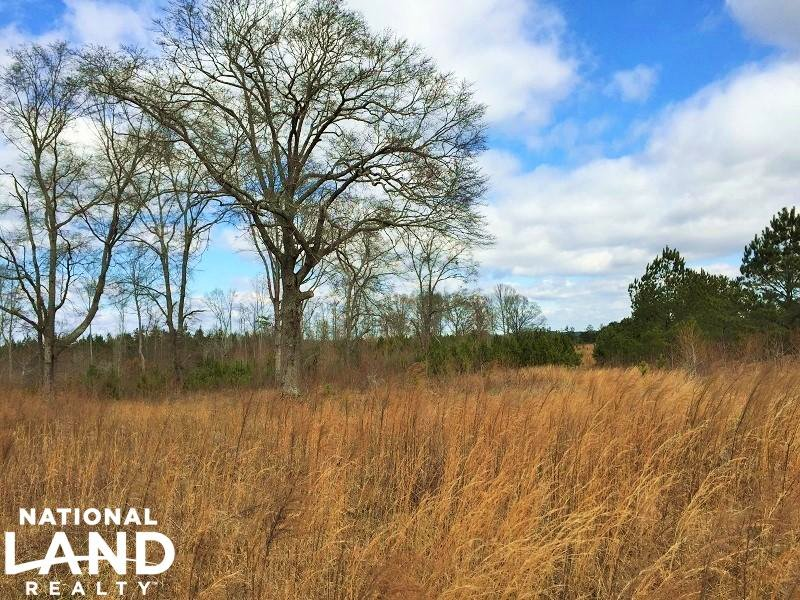 Commercial Development Land : Opelika : Lee County : Alabama