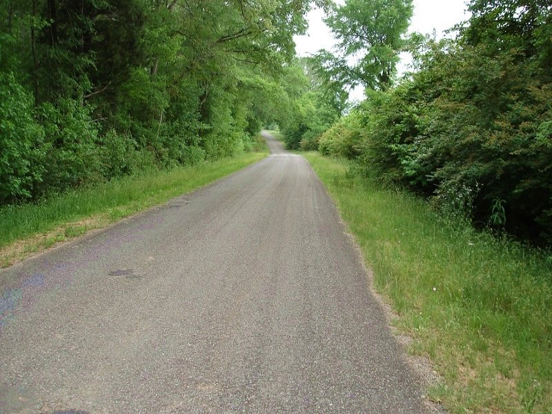 Recreational Hunting Tract : Akron : Hale County : Alabama