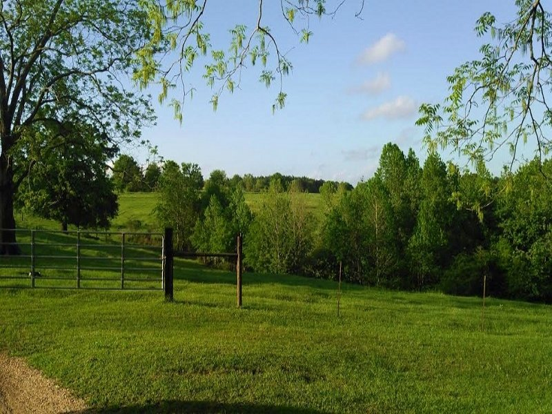 Home With Cattle And Horse Farm : Brundidge : Pike County : Alabama