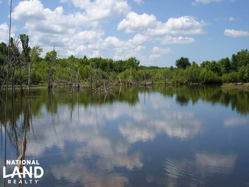 Weekend Hunting & Fishing Retreat : Gainesville : Sumter County : Alabama