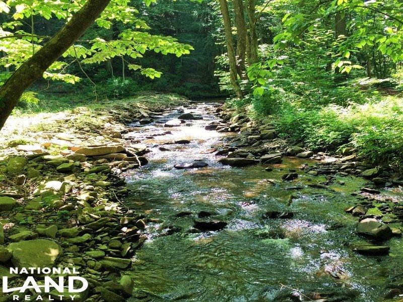 Georgian Highlands Mountain Homesit : Ellijay : Gilmer County : Georgia