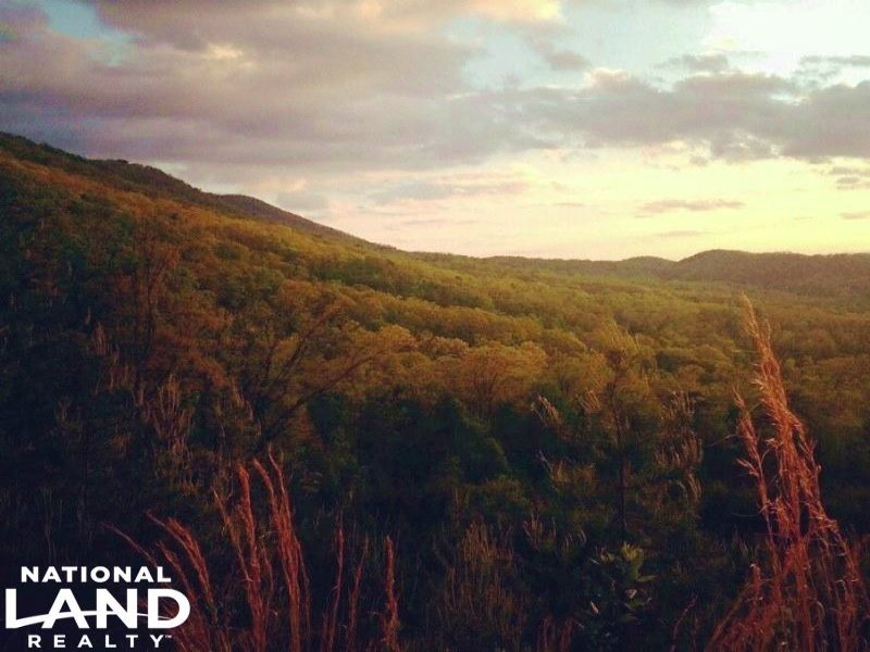 Chilhowee Mountain Land : Maryville : Blount County : Tennessee