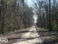 Chattahoochee River Hunting Land : Fort Mitchell : Russell County : Alabama