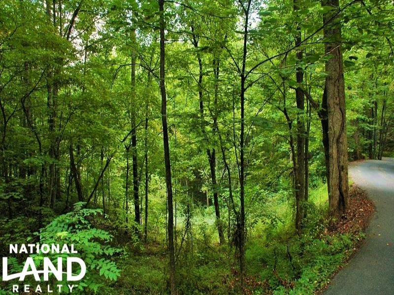 Private Wooded Homesite : Sevierville : Sevier County : Tennessee