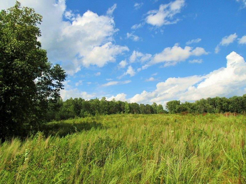 Gaffney Recreational Homesite : Gaffney : Cherokee County : South Carolina
