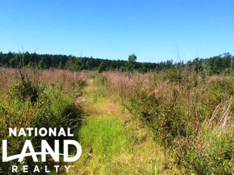 Bonneau Recreational Homesite : Bonneau : Berkeley County : South Carolina