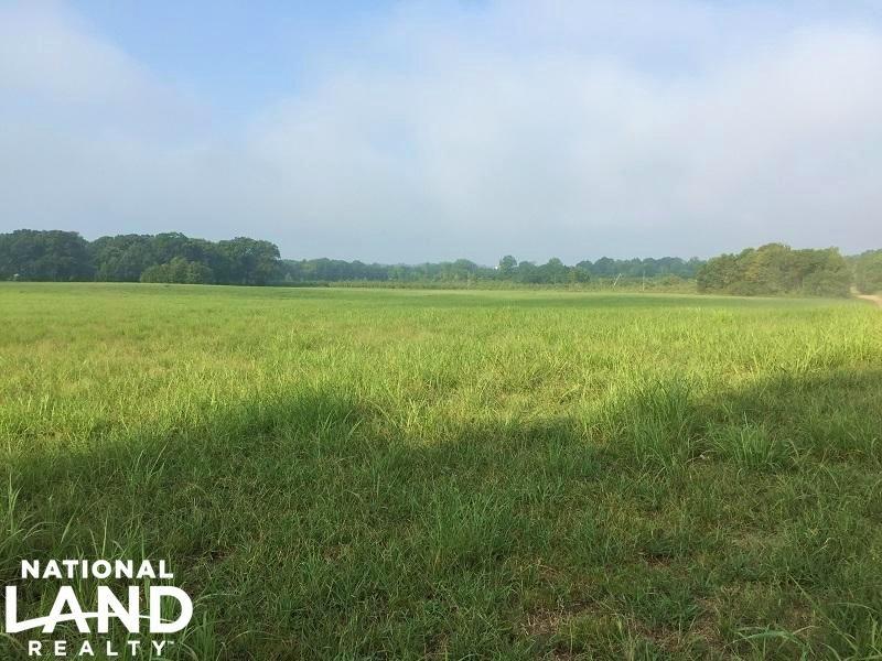 Pasture Or Row Crop Acreage : Macon : Noxubee County : Mississippi