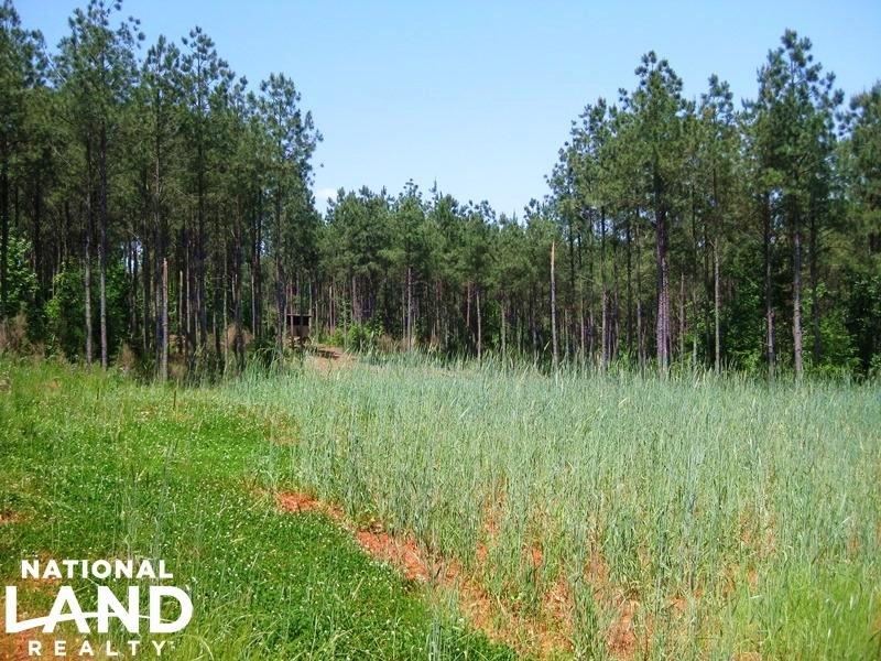 Winnsboro Timber Investment & Recre : Winnsboro : Fairfield County : South Carolina
