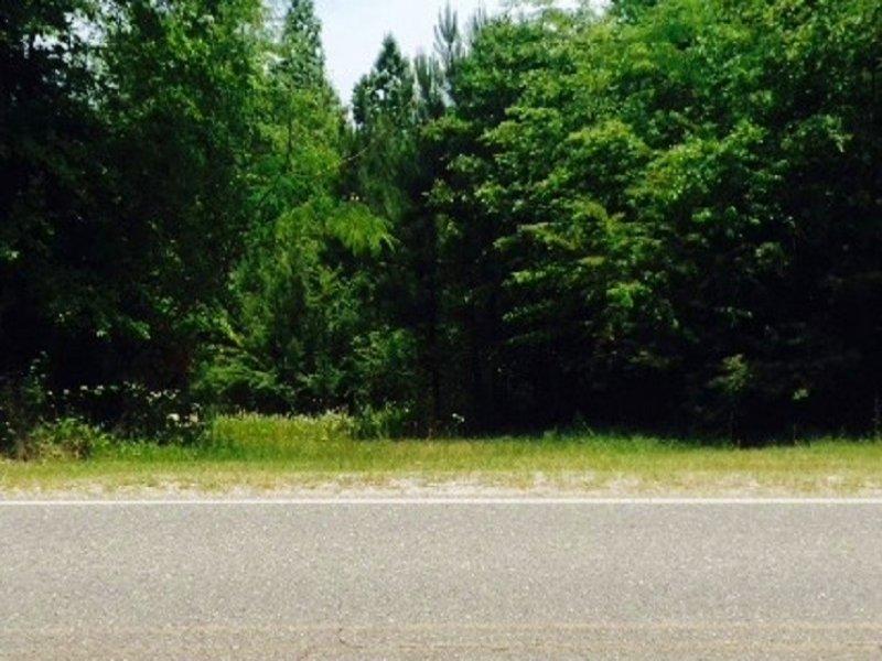 Homesite Tract : Chatom : Washington County : Alabama