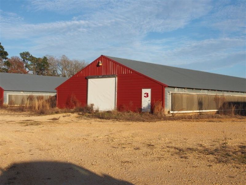Poultry Farm, Smith County, Ms : Mize : Smith County : Mississippi