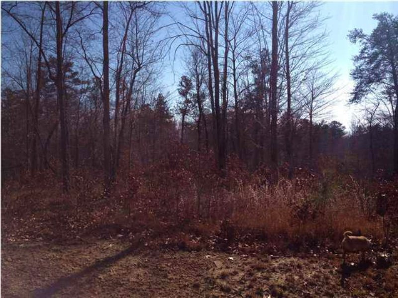 2.17+/- Acres On Ferdonia Mountain : Dunlap : Sequatchie County : Tennessee