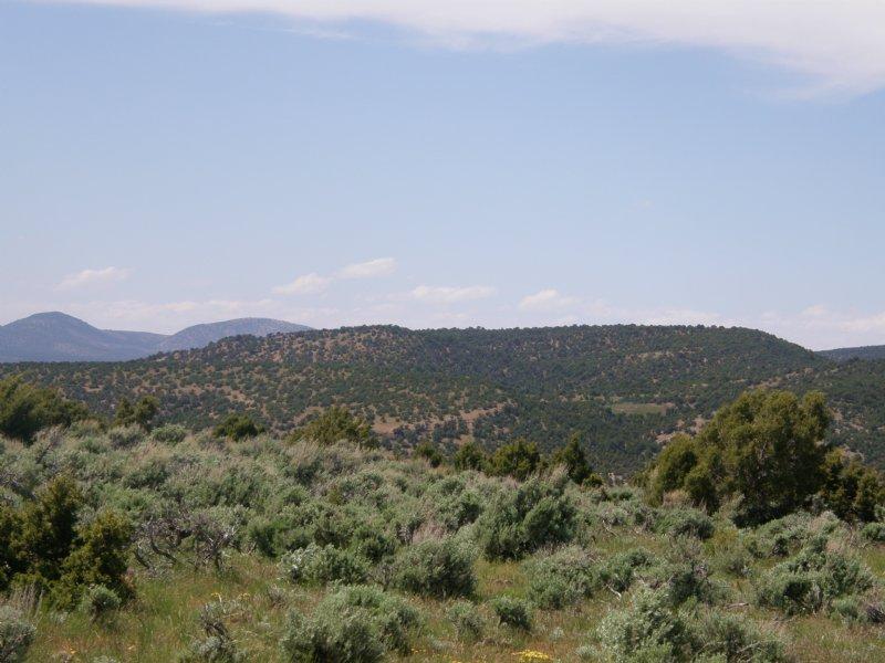 Pato Ranch : Maybell : Moffat County : Colorado