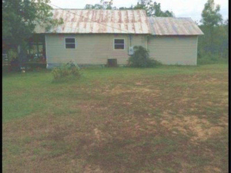 9.22 Acres Residential Land : Lena : Scott County : Mississippi