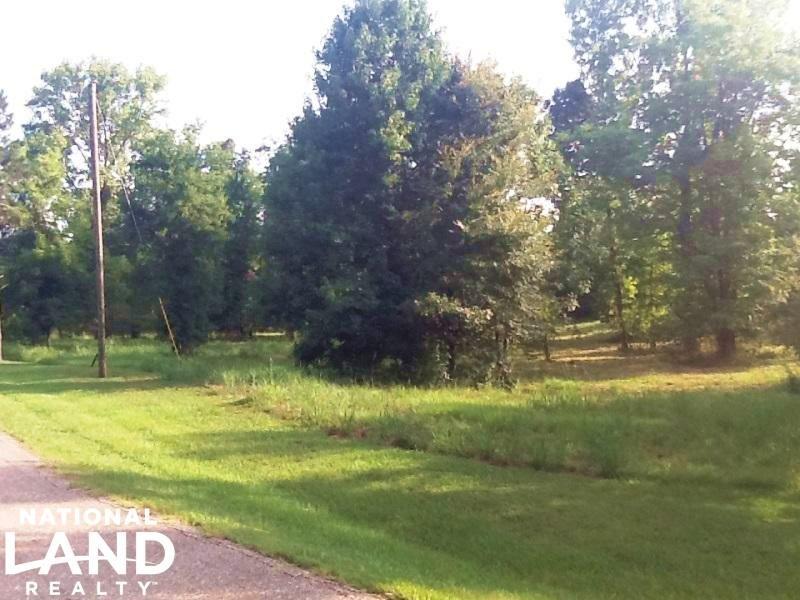 Prairie Bluff Residential Lot (#7) : Catherine : Wilcox County : Alabama