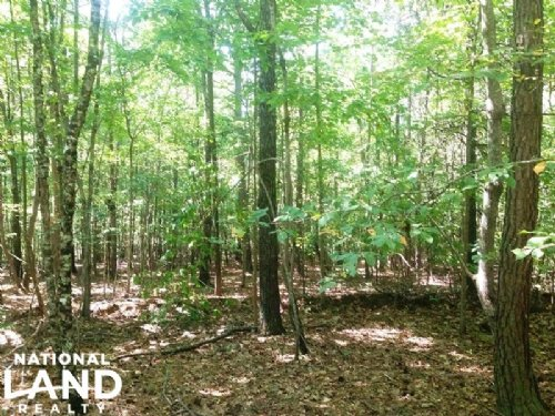 Haralson Recreational Homesite : Tallapoosa : Haralson County : Georgia