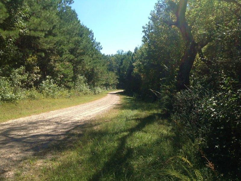Private Recreational Homesite In Bu : Buchanan : Haralson County : Georgia
