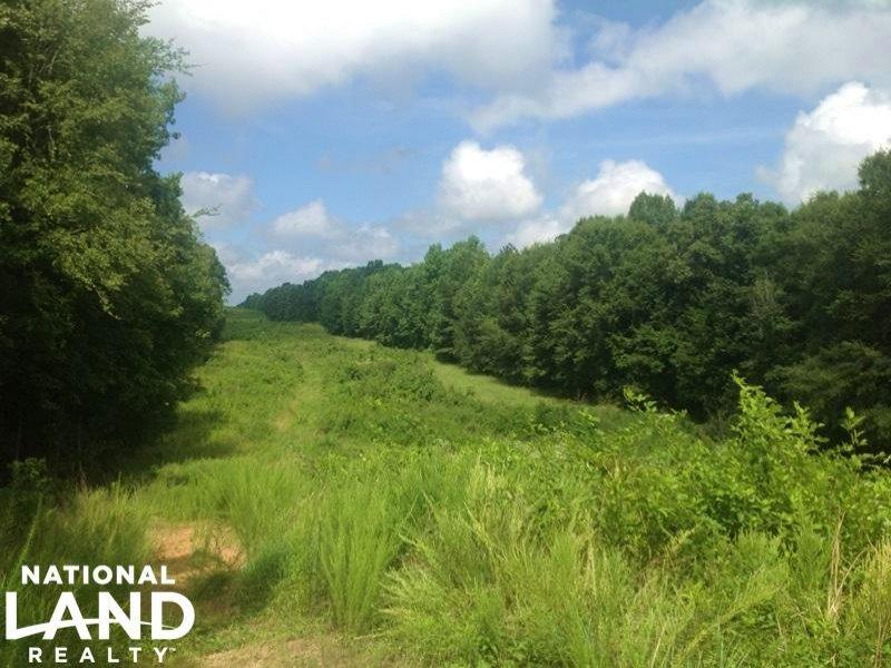 95 Acre Recreational Tract : Madison : Morgan County : Georgia