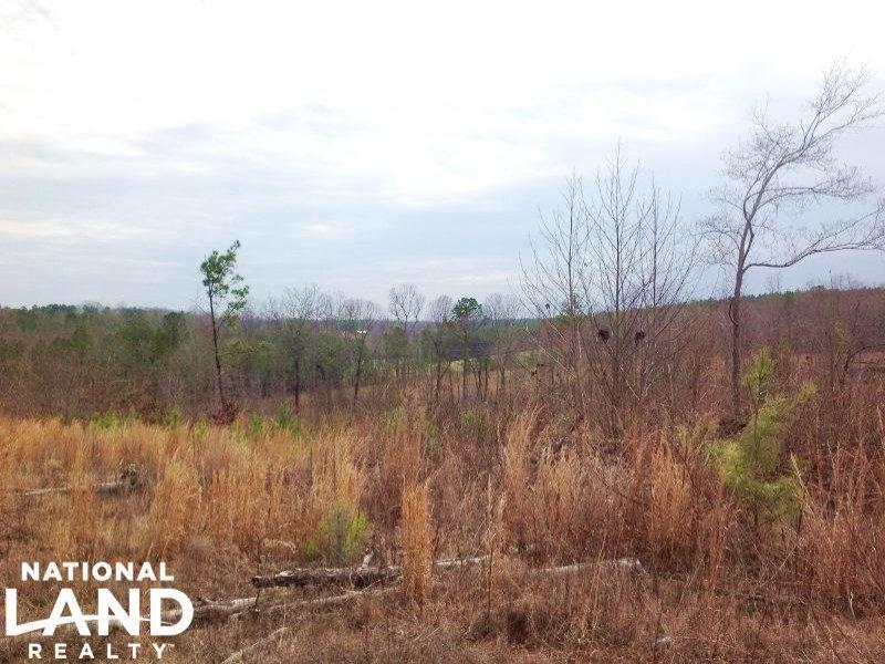 Potential Farmland Or Timber Invest : Franklin : Heard County : Georgia