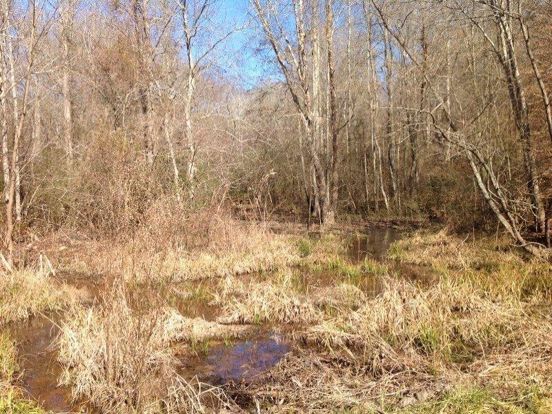 Chattahoochee River Farming Estate : Franklin : Heard County : Georgia